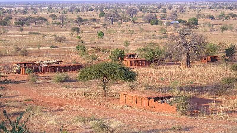 The reddy brown, dry landscape of Tanzania
