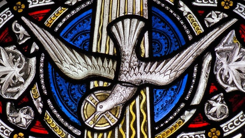 Detail of a stained glass window in Emmanuel depicting a dove in flight