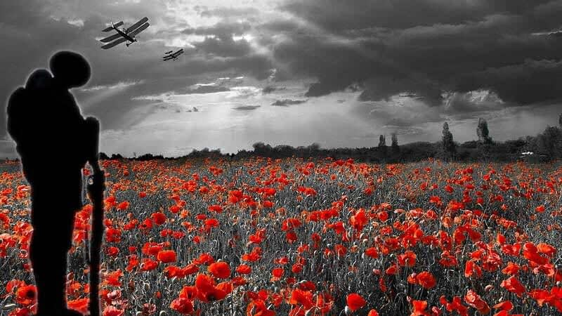 Monocrome image of a poppy field with poppies highlighted in red, a First World War soldier and fighter planes flying overhead