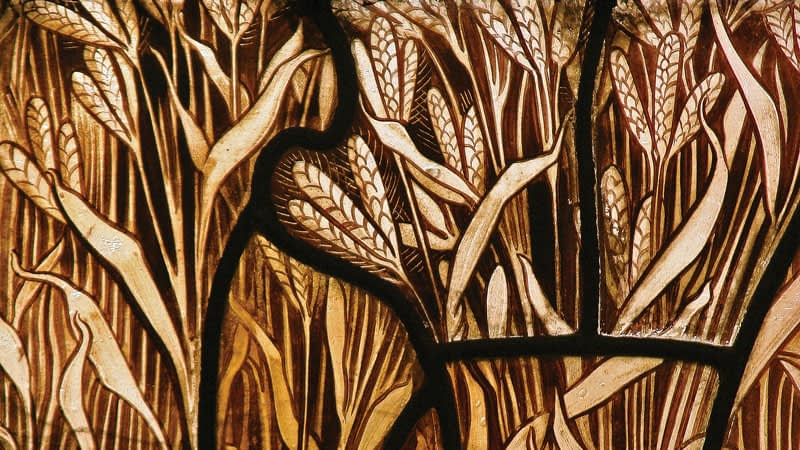 Detail of Emmanuel church stained glass window showing a filed of wheat